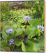 The Pretty Pond And Perfect Petals Wood Print