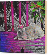 The Psychedelic Cat Wood Print