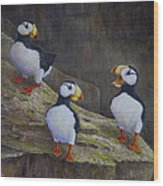The Puffin Report Wood Print