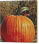 The Pumpkin Wood Print