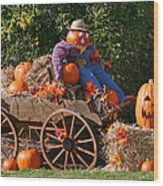 The Pumpkin Farmer Wood Print