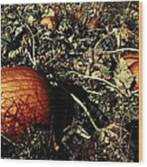 The Pumpkin Patch Wood Print