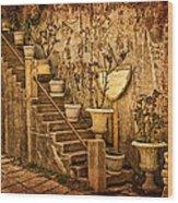 The Queen's Garden Wood Print
