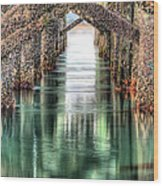 The Quiet Of Green Wood Print by JC Findley