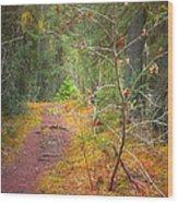 The Quiet Path Wood Print