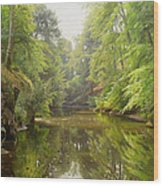 The Quiet River Wood Print