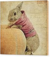 The Rabbit And The Pumpkin Wood Print
