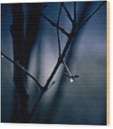The Rain Song Wood Print