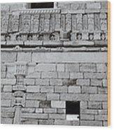 The Rajput Wall Wood Print