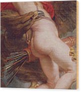 The Rape Of Ganymede Wood Print by Rubens