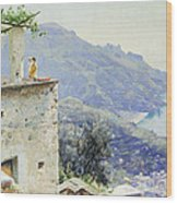 The Ravello Coastline Wood Print