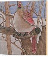 The Real Angry Bird Wood Print
