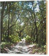 The Real Florida Wood Print