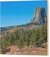 The Realm Of Devils Tower Wood Print
