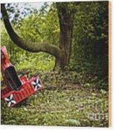The Red Baron Wood Print