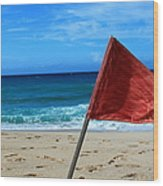 The Red Flag Wood Print