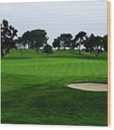 The Red Flagstick-torrey Pines Wood Print