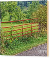 The Red Gate Wood Print