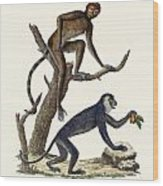 The Red Howler Monkey Wood Print