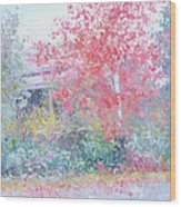 The Red Japanese Maple Tree Wood Print