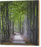 The Red Maple Allee Wood Print