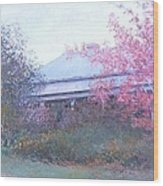 The Red Maple Tree Wood Print