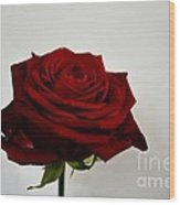 The Red Side  Wood Print by Aqil Jannaty