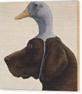 The Reluctant Retriever... Wood Print