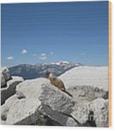 The Resident of Half Dome Wood Print