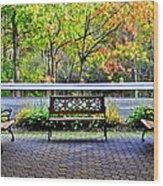 The Resting Spot Wood Print