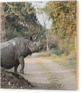 The Rhino At Kaziranga Wood Print