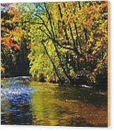 The Rifle River At Highbanks Base Wood Print