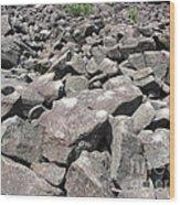 The Ringing Rocks Of Bucks County Wood Print