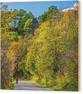 The River Road Wood Print