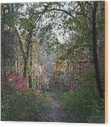 The Road Ahead No.2 Wood Print