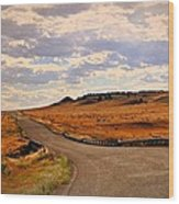 The Road Less Traveled Wood Print by Marty Koch