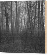 The Road Less Travelled Wood Print