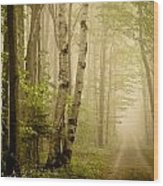 The Road Through The Woods Wood Print