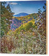 The Road To Cataloochee On A Frosty Fall Morning Wood Print