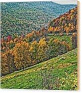 The Road To Glady Wv Wood Print
