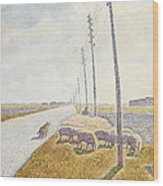 The Road To Nieuport Wood Print