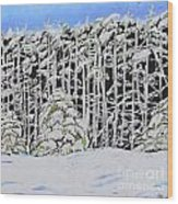The Road To Petoskey Wood Print