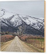The Road To Soldier Creek Wood Print