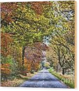 The Road To The Fall Wood Print
