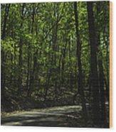 The Roads Of Alabama Wood Print