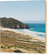 The Rock Of Piedras Blancas Lighthouse In San Simeon Ca Wood Print