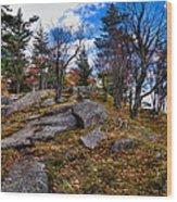 The Rocks Above Eagle Bay IIi Wood Print