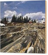 The Rocks At Pemaquid Wood Print