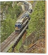 The Rocky Mountaineer Above The Cheakamus River Wood Print
