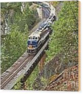 The Rocky Mountaineer Railroad Wood Print